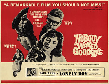 A movie poster for Nobody Waved Goodbye.